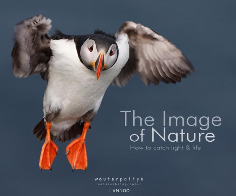The image of nature