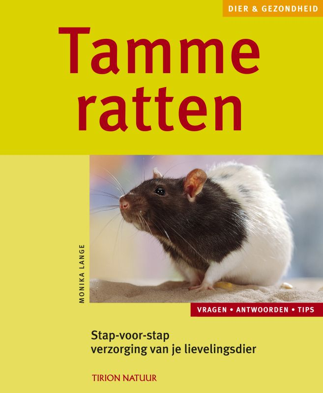 Tamme ratten