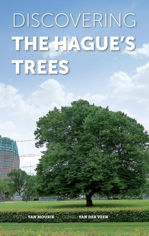 Discovering The Hagues trees