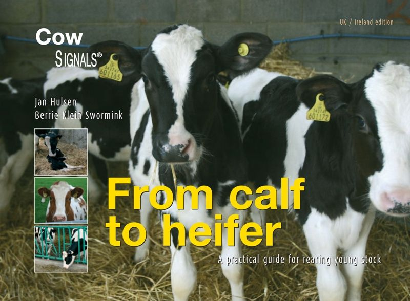 eBook from calf to heifer