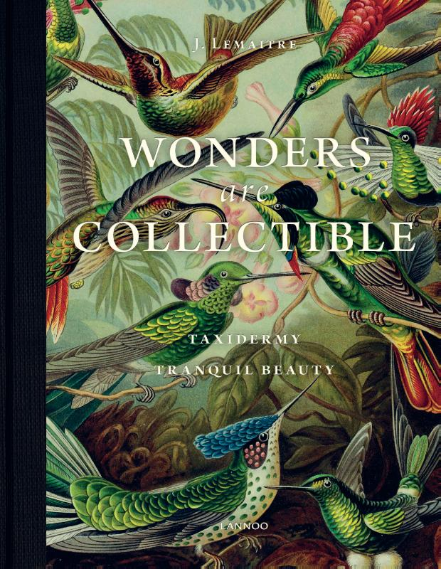 Wonders are collectible