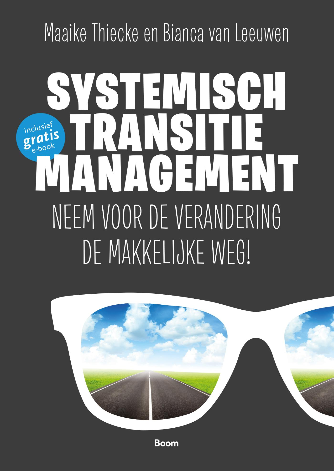 Systemisch transitiemanagement