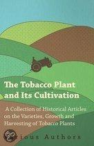 The Tobacco Plant and Its Cultivation - A Collection of Historical Articles on the Varieties, Growth and Harvesting of Tobacco Plants