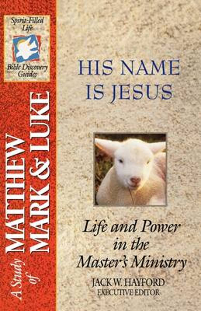 The Spirit-Filled Life Bible Discovery Series