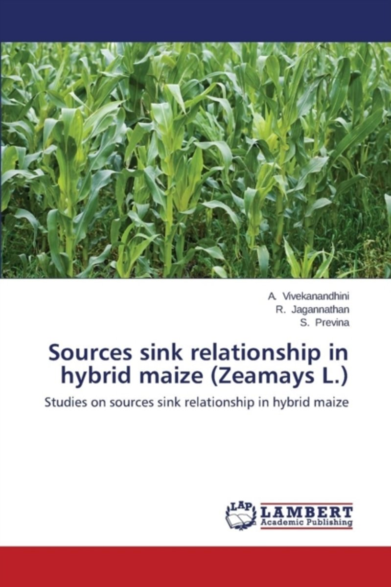 Sources Sink Relationship in Hybrid Maize (Zeamays L.)