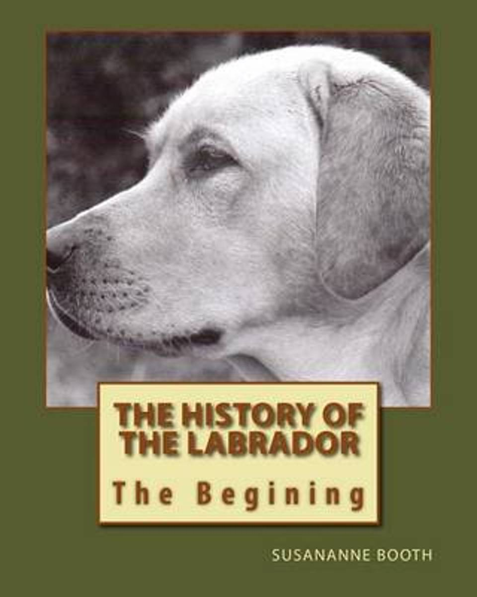 The History of the Labrador the Begining