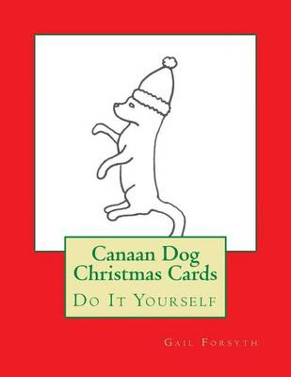 Canaan Dog Christmas Cards