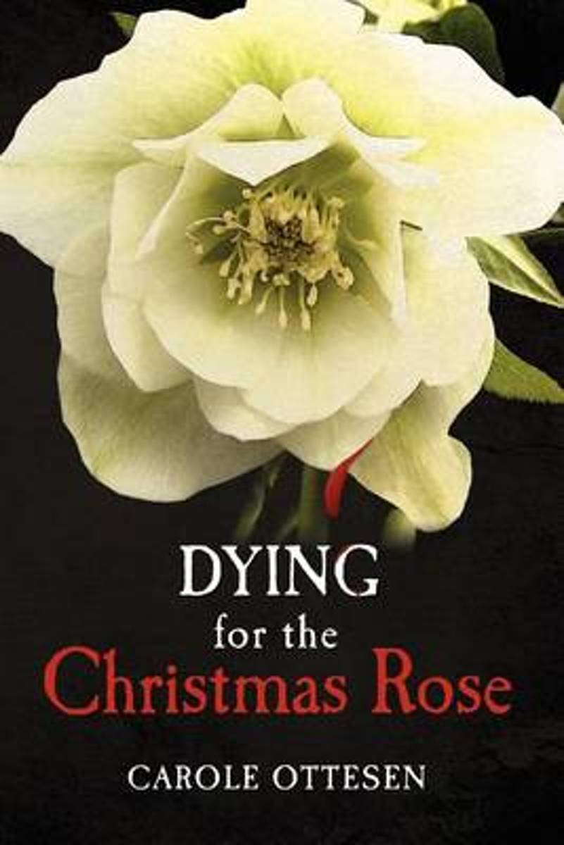 Dying for the Christmas Rose