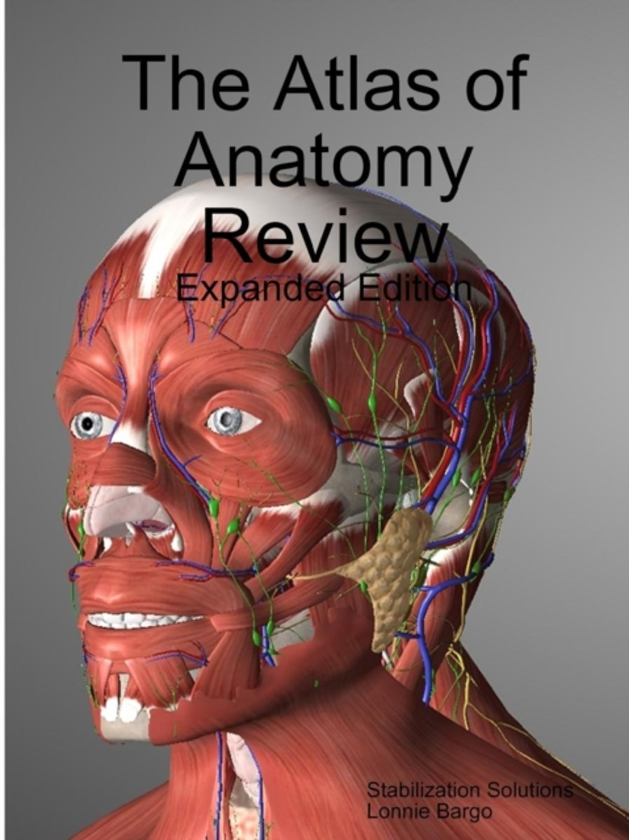 The Atlas of Anatomy Review