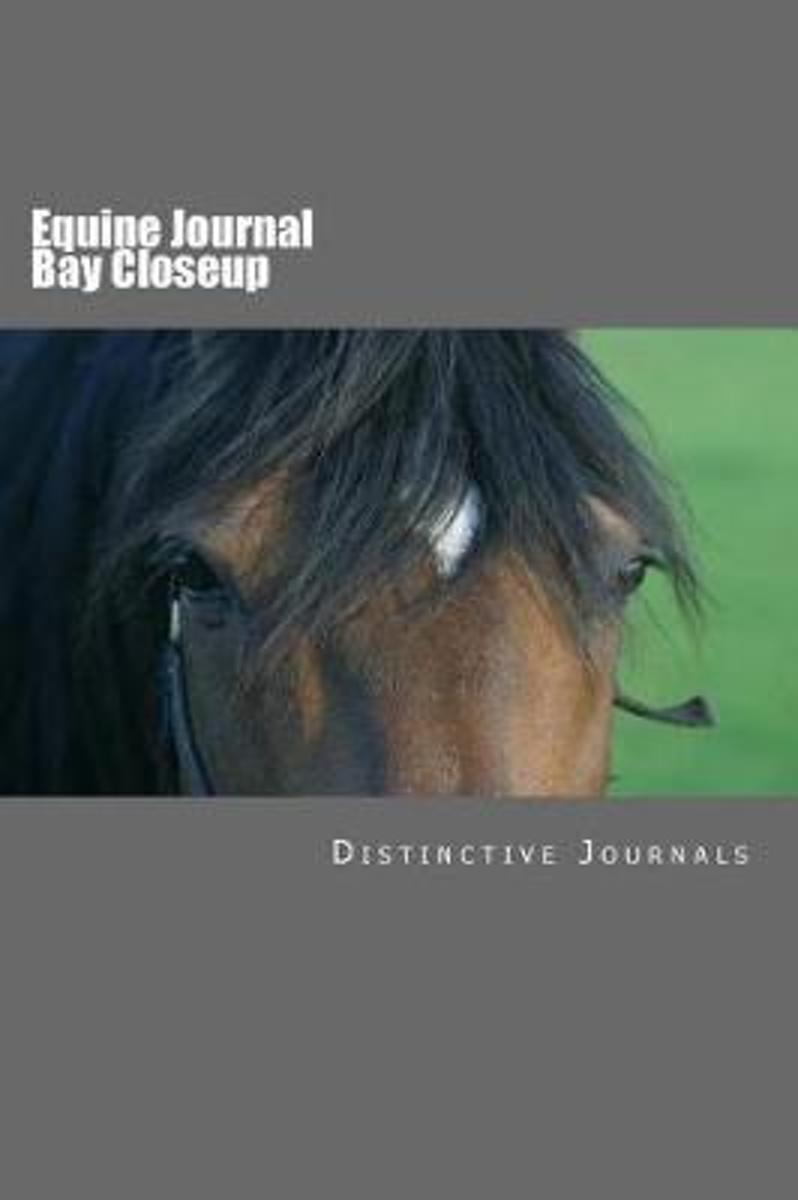 Equine Journal Bay Closeup