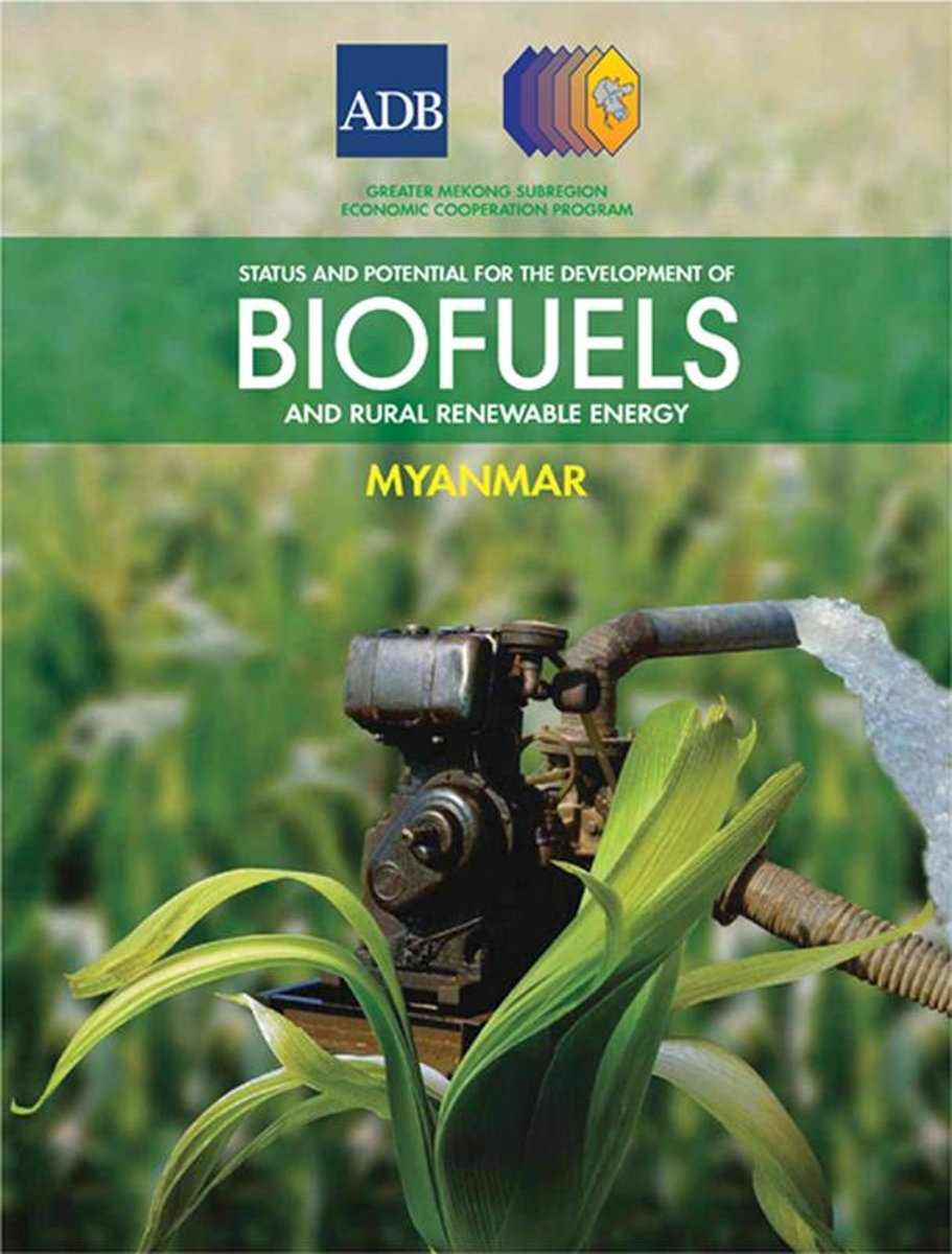 Status and Potential for the Development of Biofuels and Rural Renewable Energy: yanmar
