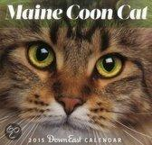 Maine Coon Cat Down East Wall Calendar