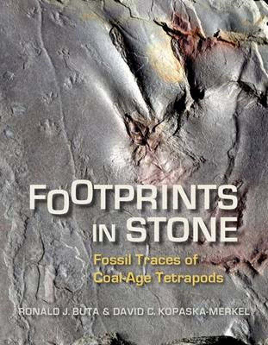 Footprints in Stone