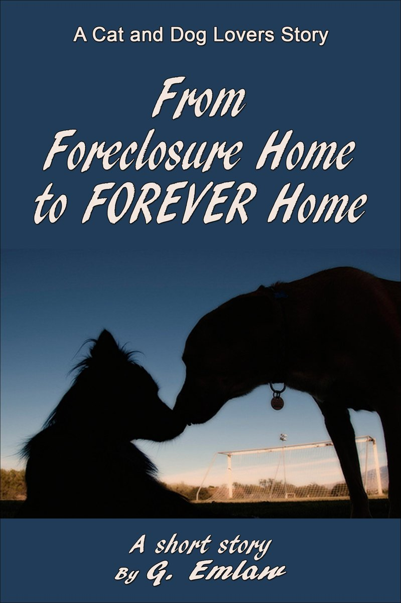 From Foreclosure Home to Forever Home