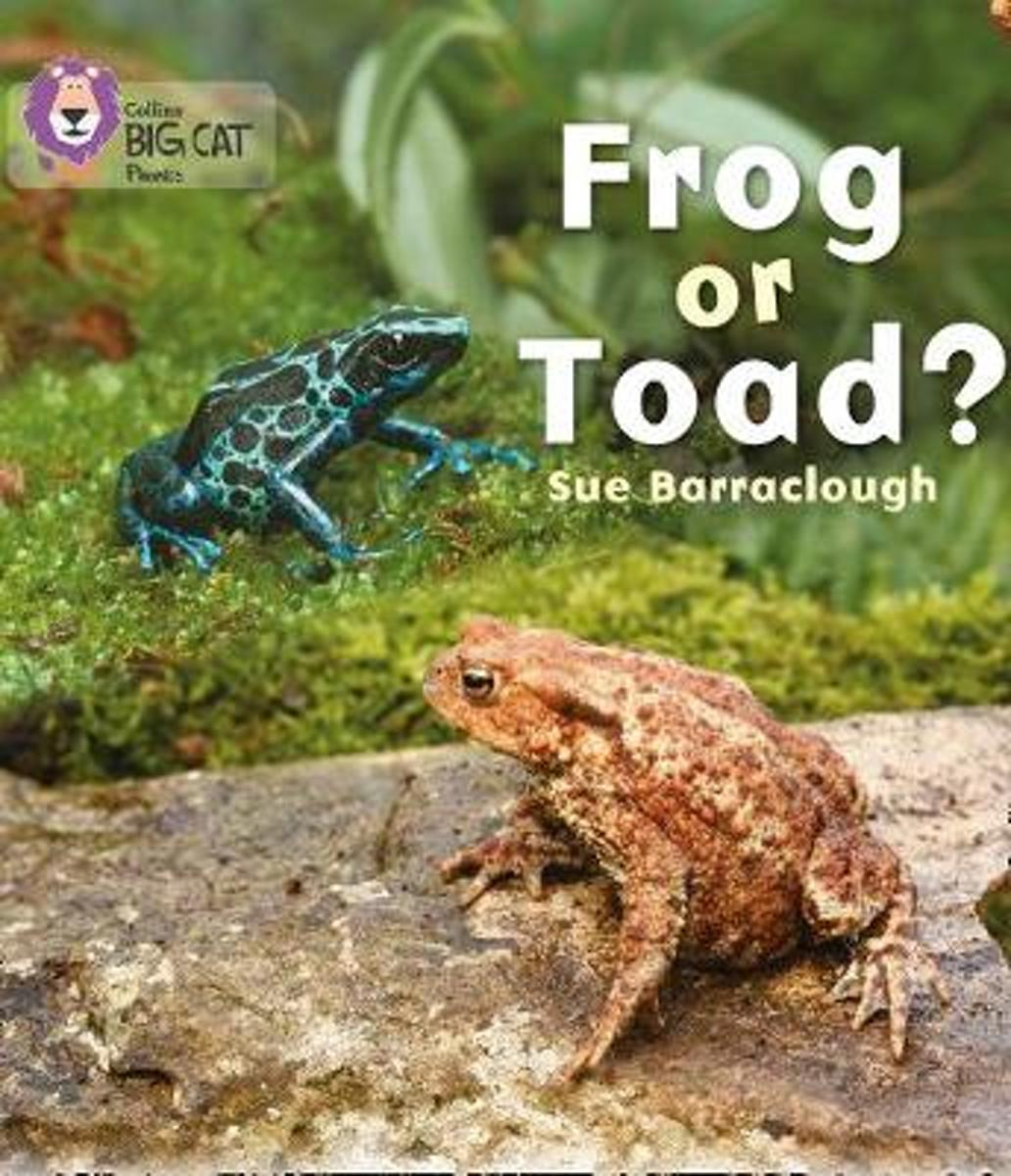 Frog or Toad? image