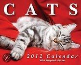Cats Mini 2012 Mini Box Calendar