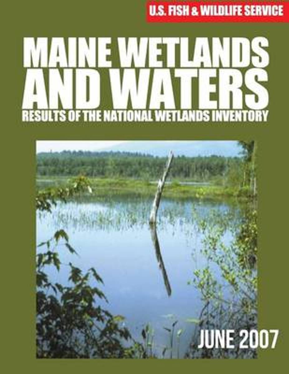Maine Wetlands and Waters