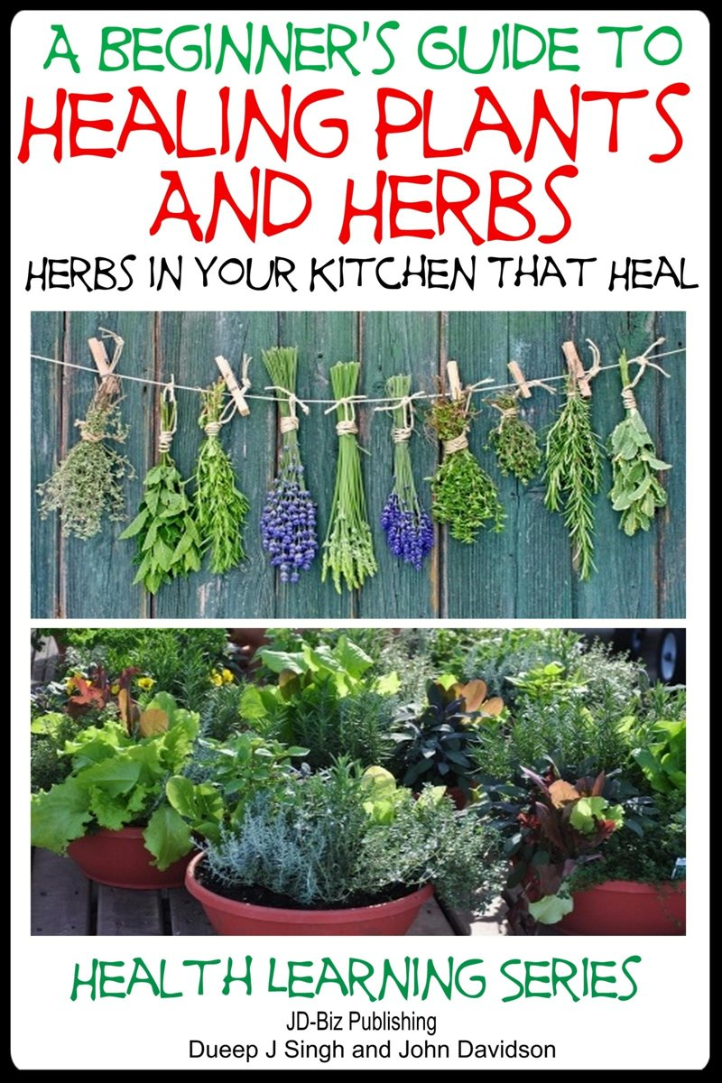 A Beginner's Guide to Healing Plants and Herbs: Herbs in Your Kitchen that Heal