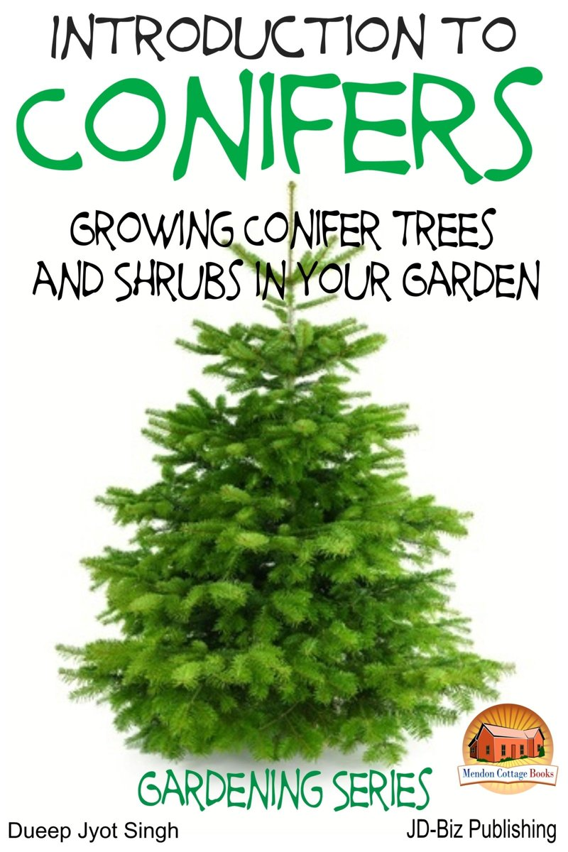 Introduction to Conifers: Growing Conifer Trees and Shrubs in Your Garden