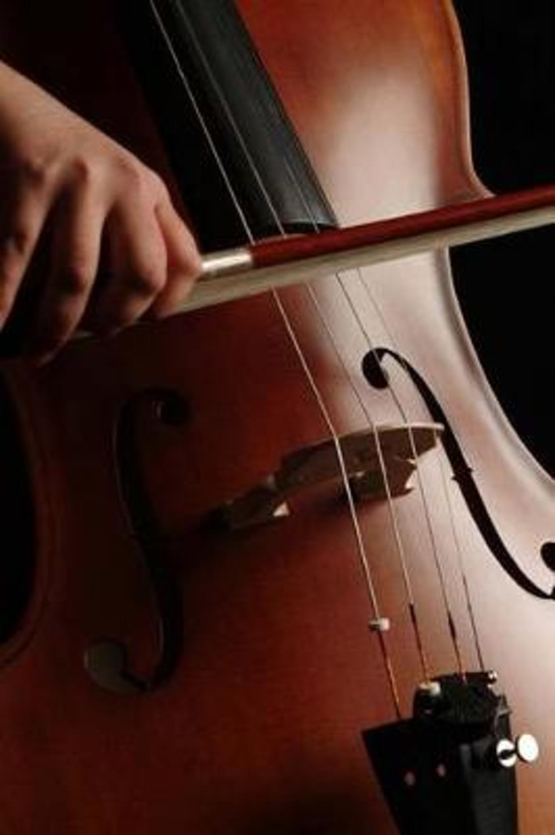 Playing the Cello Musical Instrument Journal