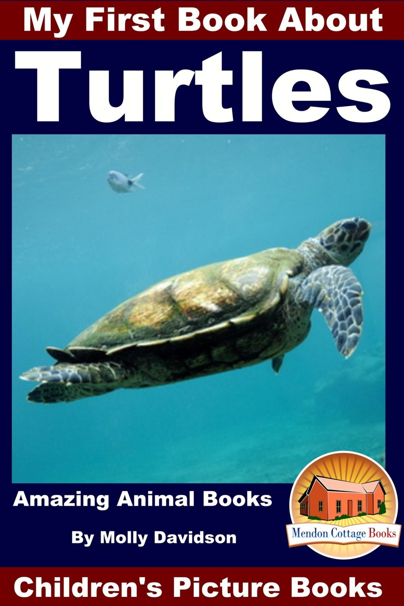 My First Book About Turtles: Amazing Animal Books - Children's Picture Books