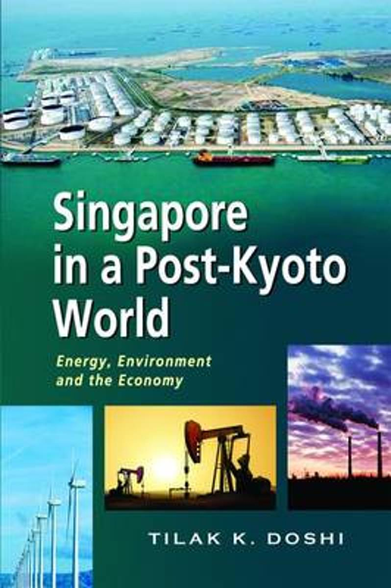 Singapore in a Post-Kyoto World