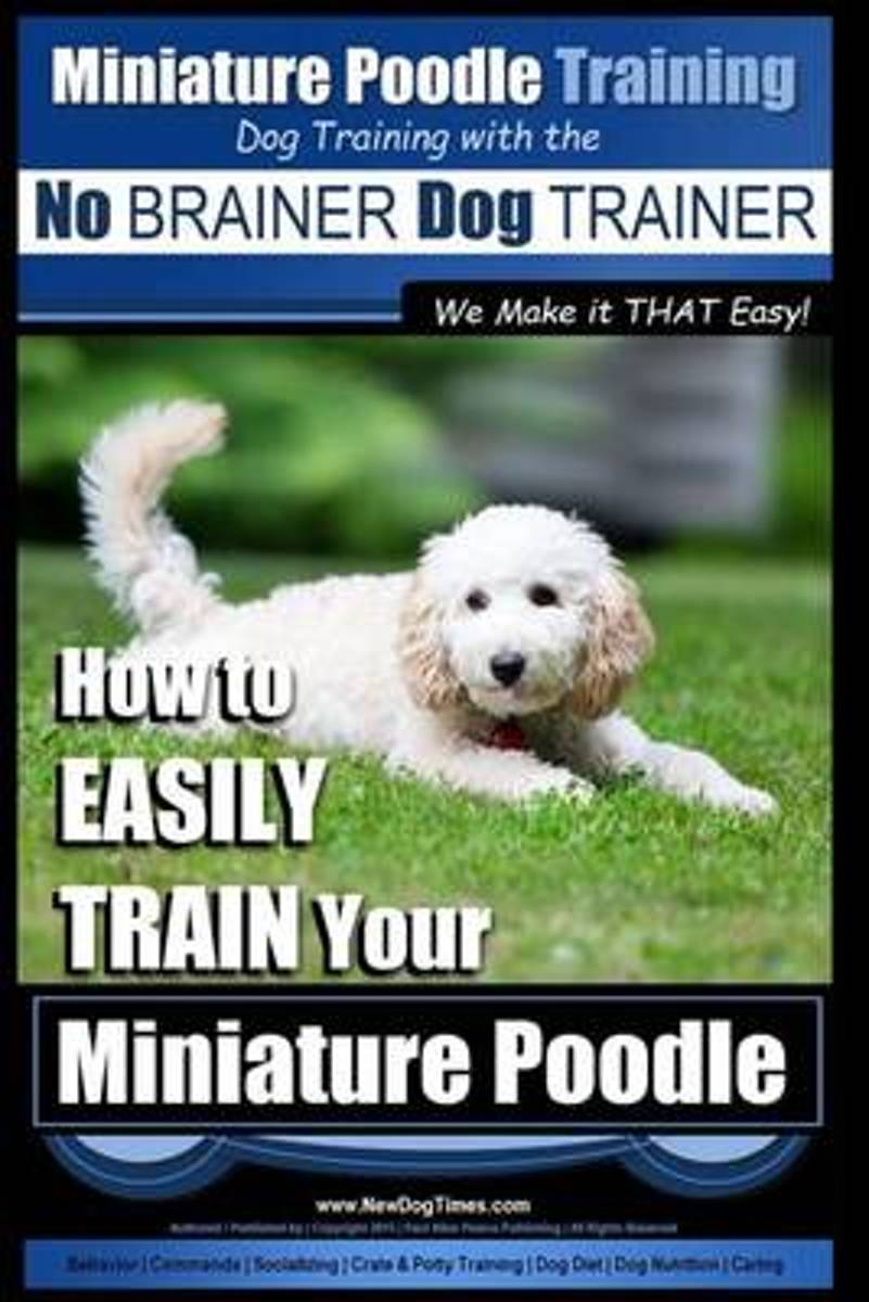 Miniature Poodle Training Dog Training with the No Brainer Dog Trainer We Make It That Easy!