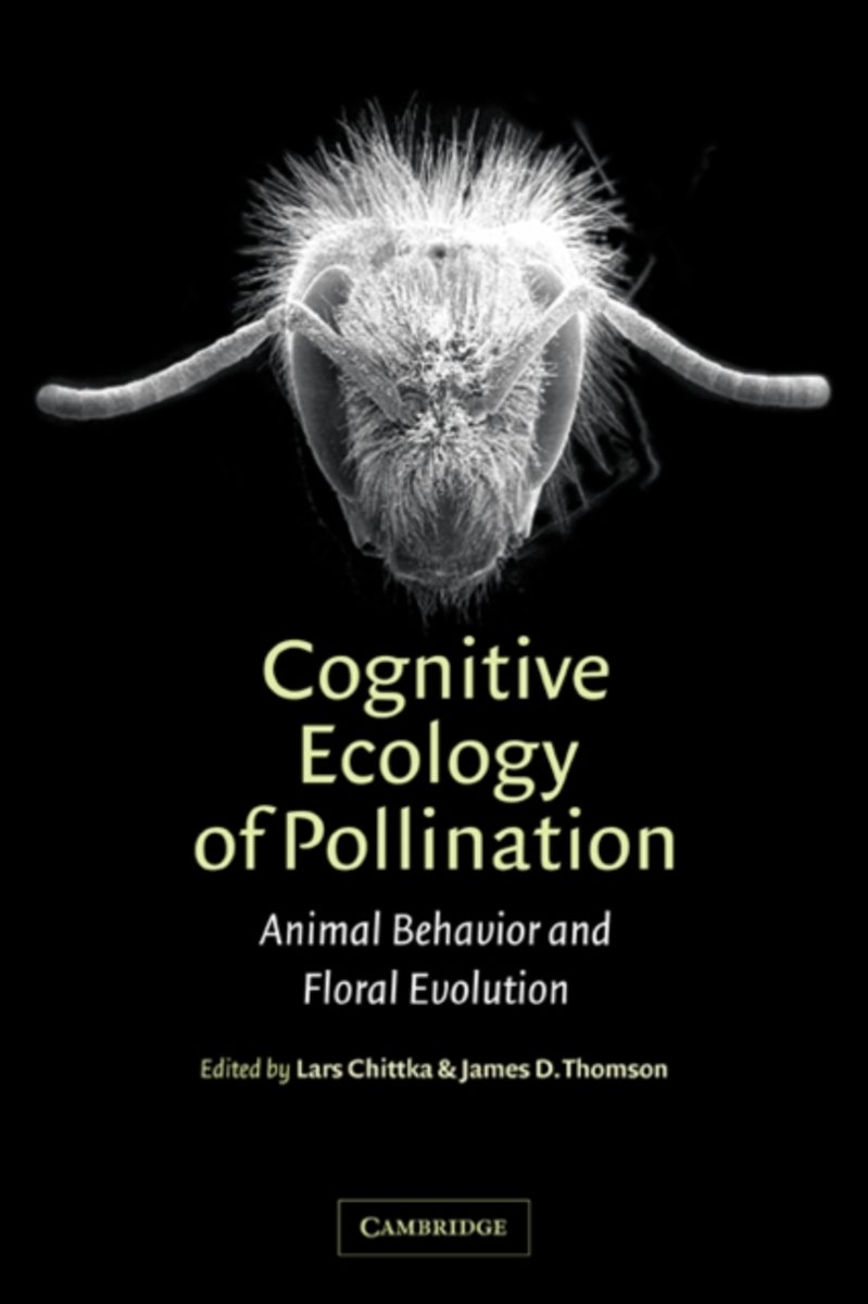 Cognitive Ecology of Pollination
