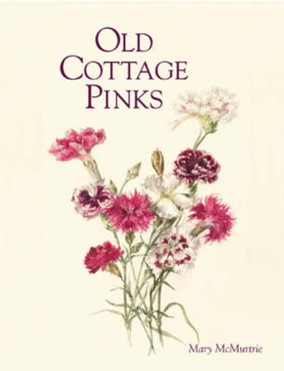 Old Pinks