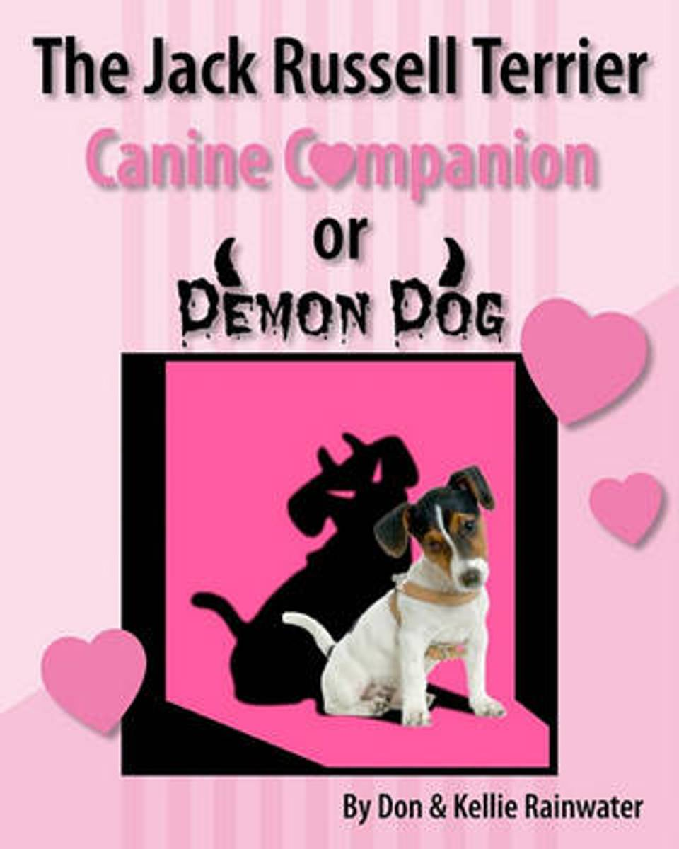 The Jack Russell Terrier Canine Companion or Demon Dog