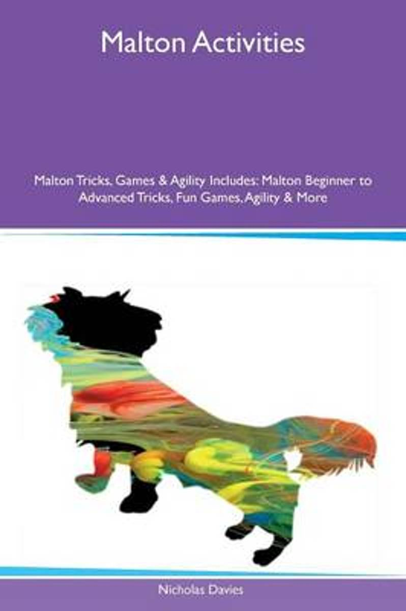 Malton Activities Malton Tricks, Games & Agility Includes