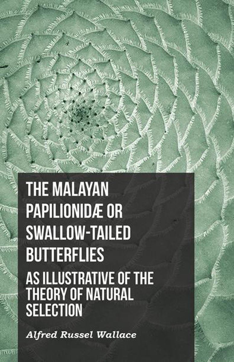 The Malayan Papilionidæ or Swallow-tailed Butterflies, as Illustrative of the Theory of Natural Selection