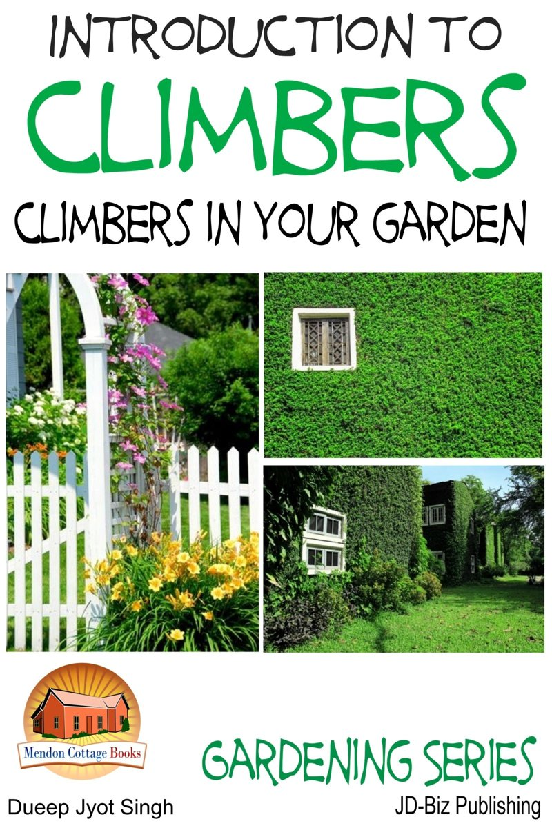 Introduction to Climbers: Climbers in your garden