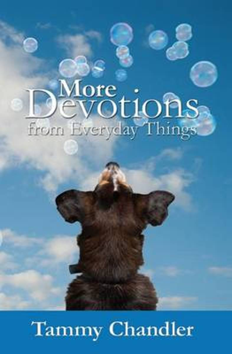 More Devotions from Everyday Things
