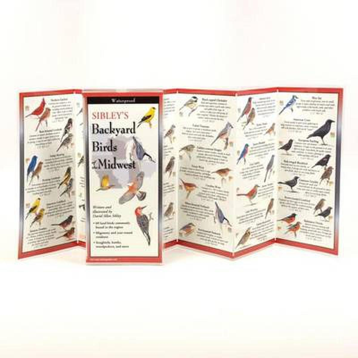 Sibley's Backyard Birds of the Midwest