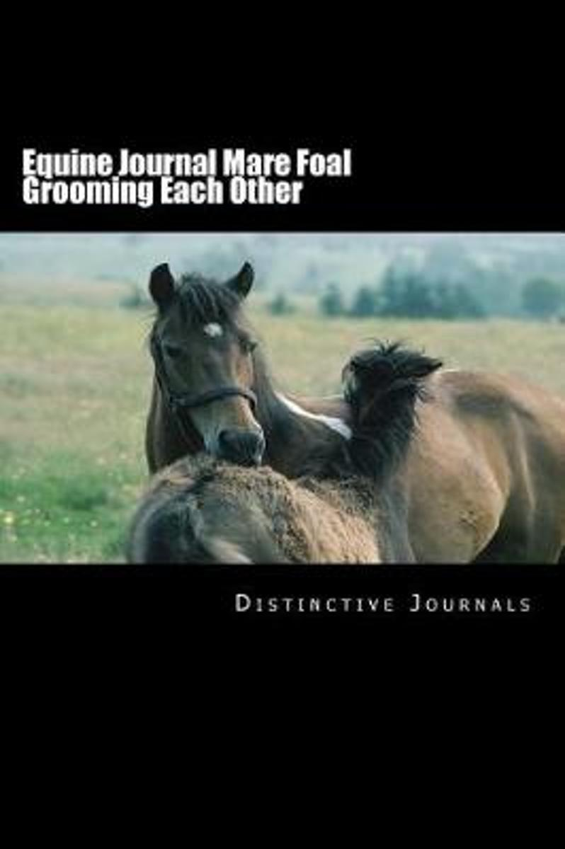 Equine Journal Mare Foal Grooming Each Other