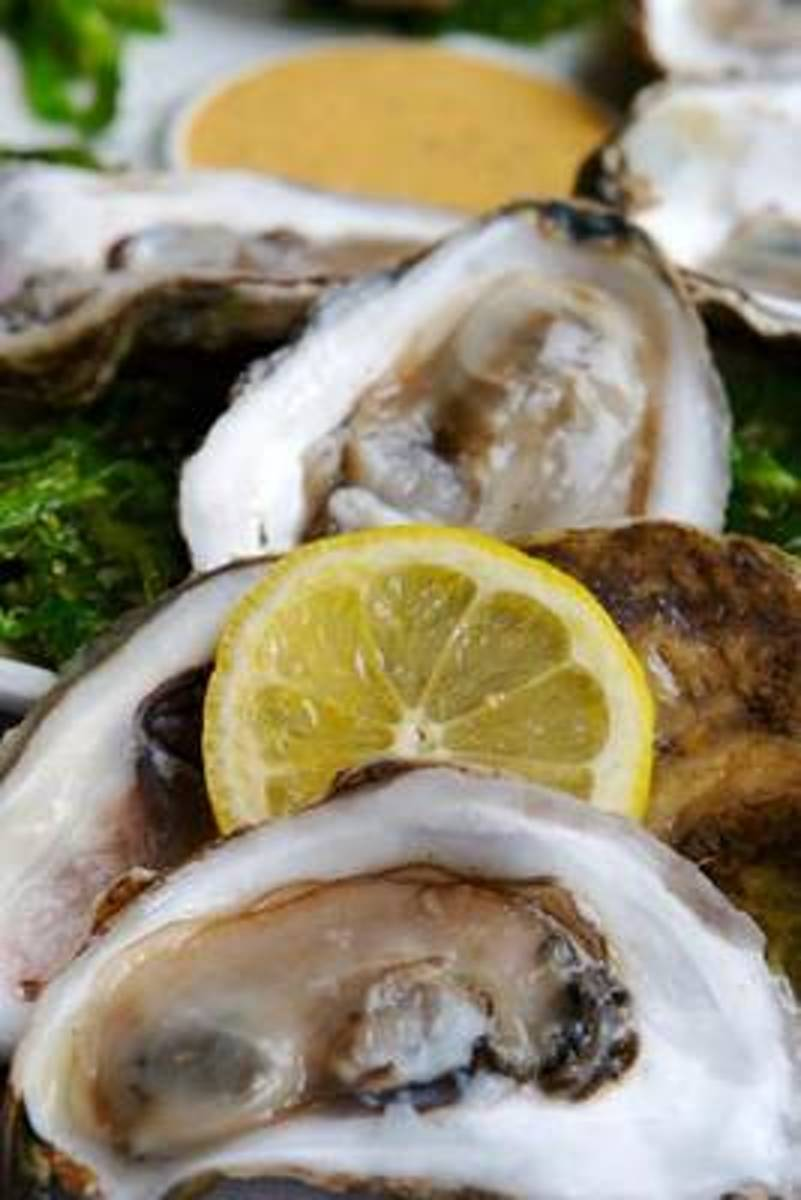 Oysters on the Half Shell Journal