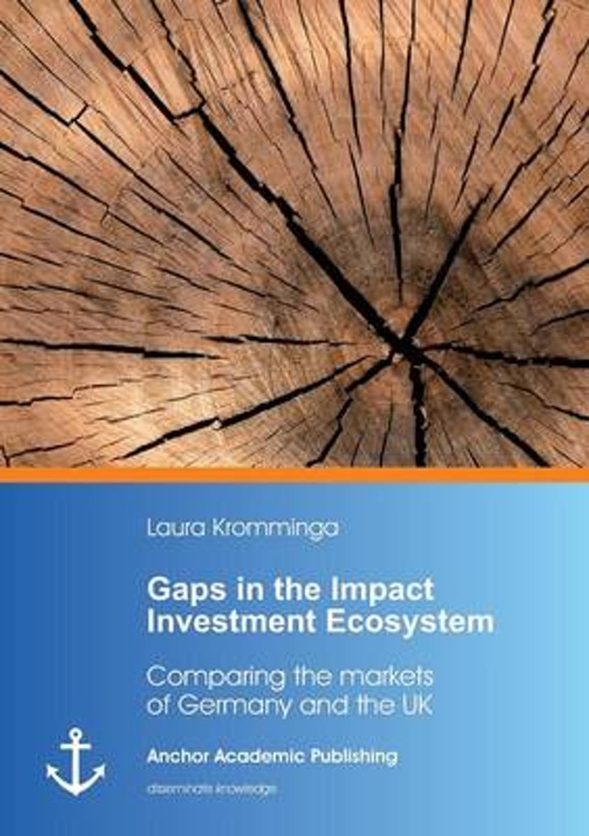 Gaps in the Impact Investment Ecosystem