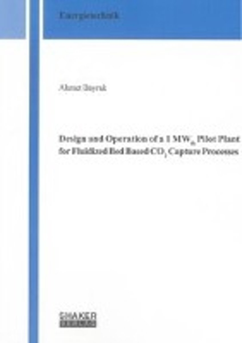 Design and Operation of a 1 MWth Pilot Plant for Fluidized Bed Based CO2 Capture Processes