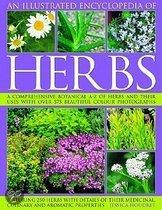 An Illustrated Encyclopedia Of Herbs