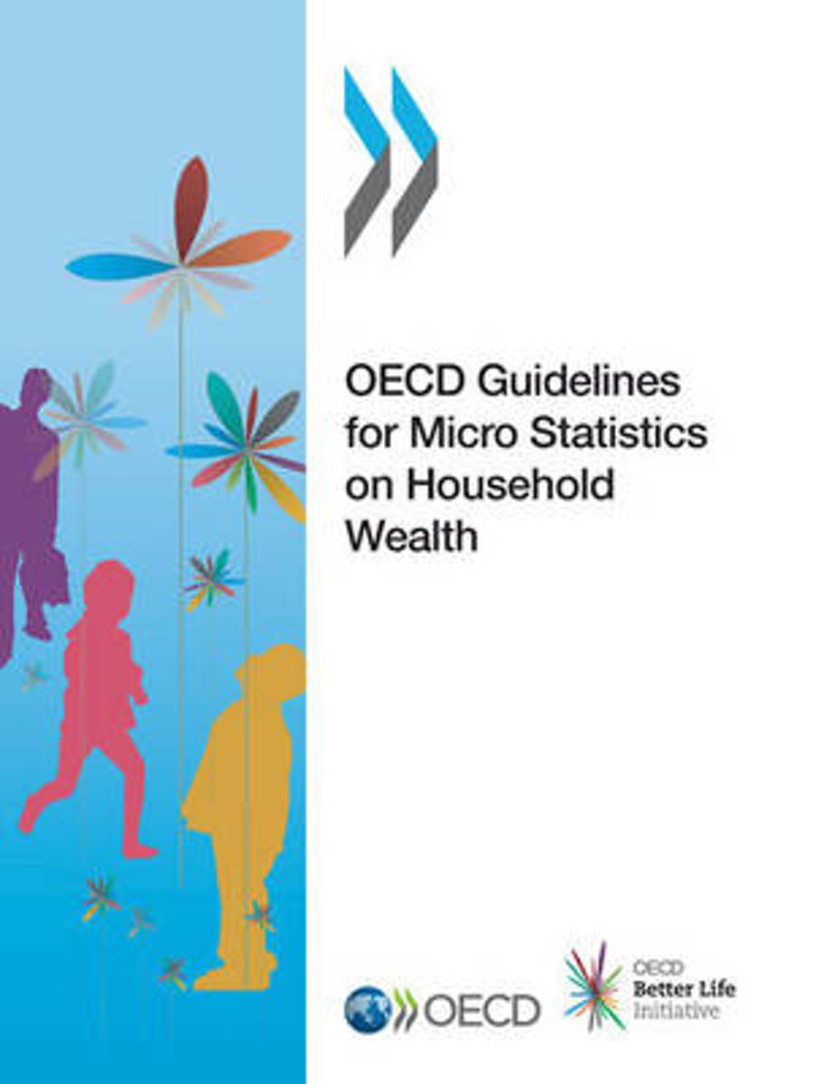 OECD guidelines for micro statistics on household wealth