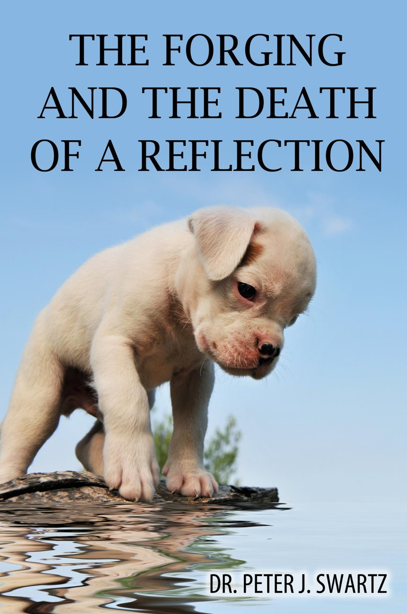 The Forging and the Death of a Reflection