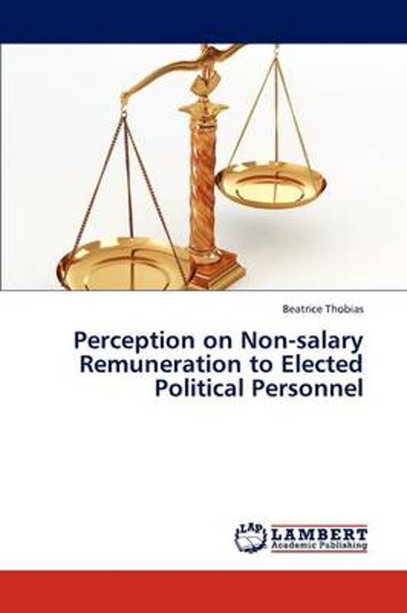 Perception on Non-Salary Remuneration to Elected Political Personnel