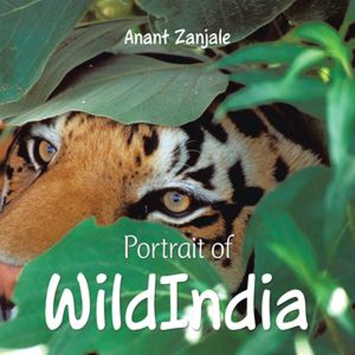 Portrait of Wildindia