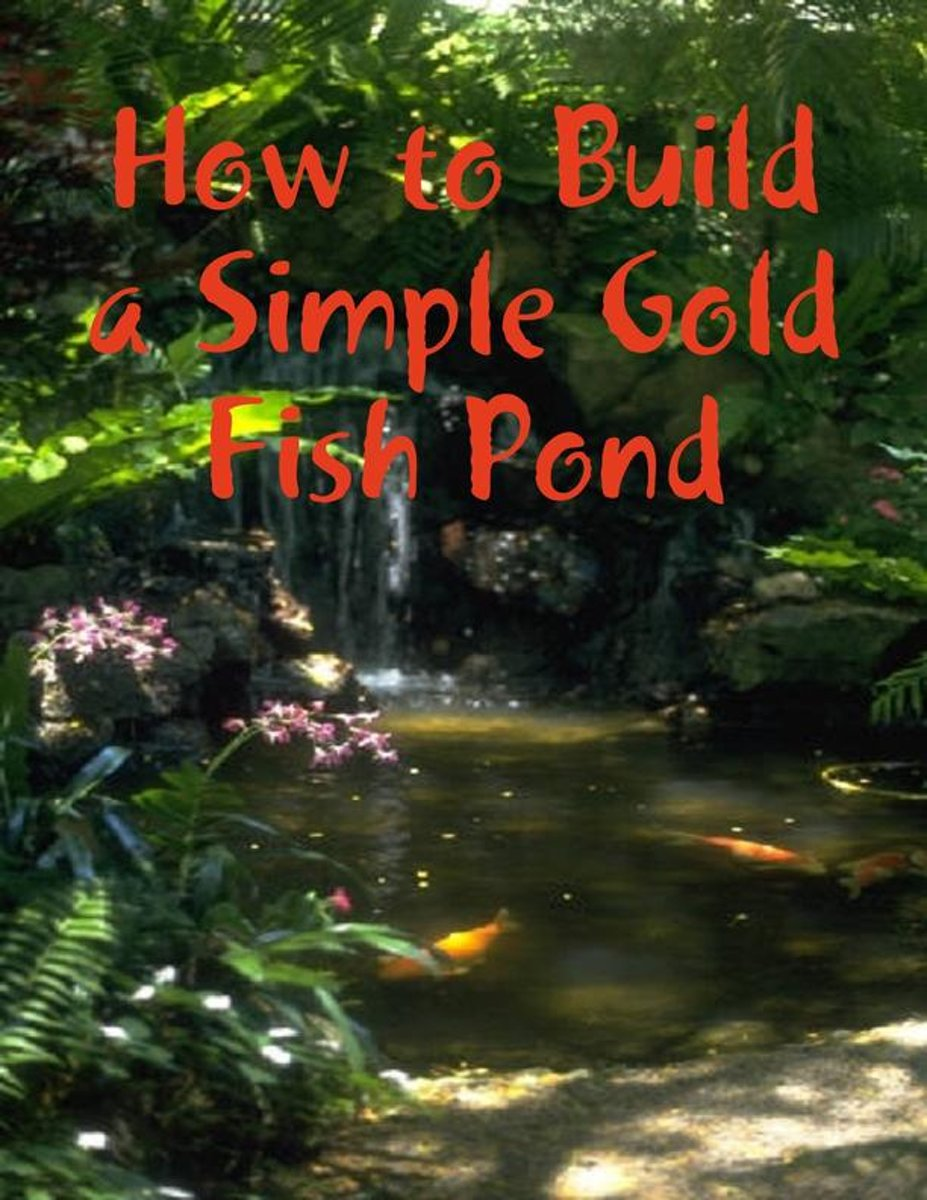 How to Build a Simple Gold Fish Pond