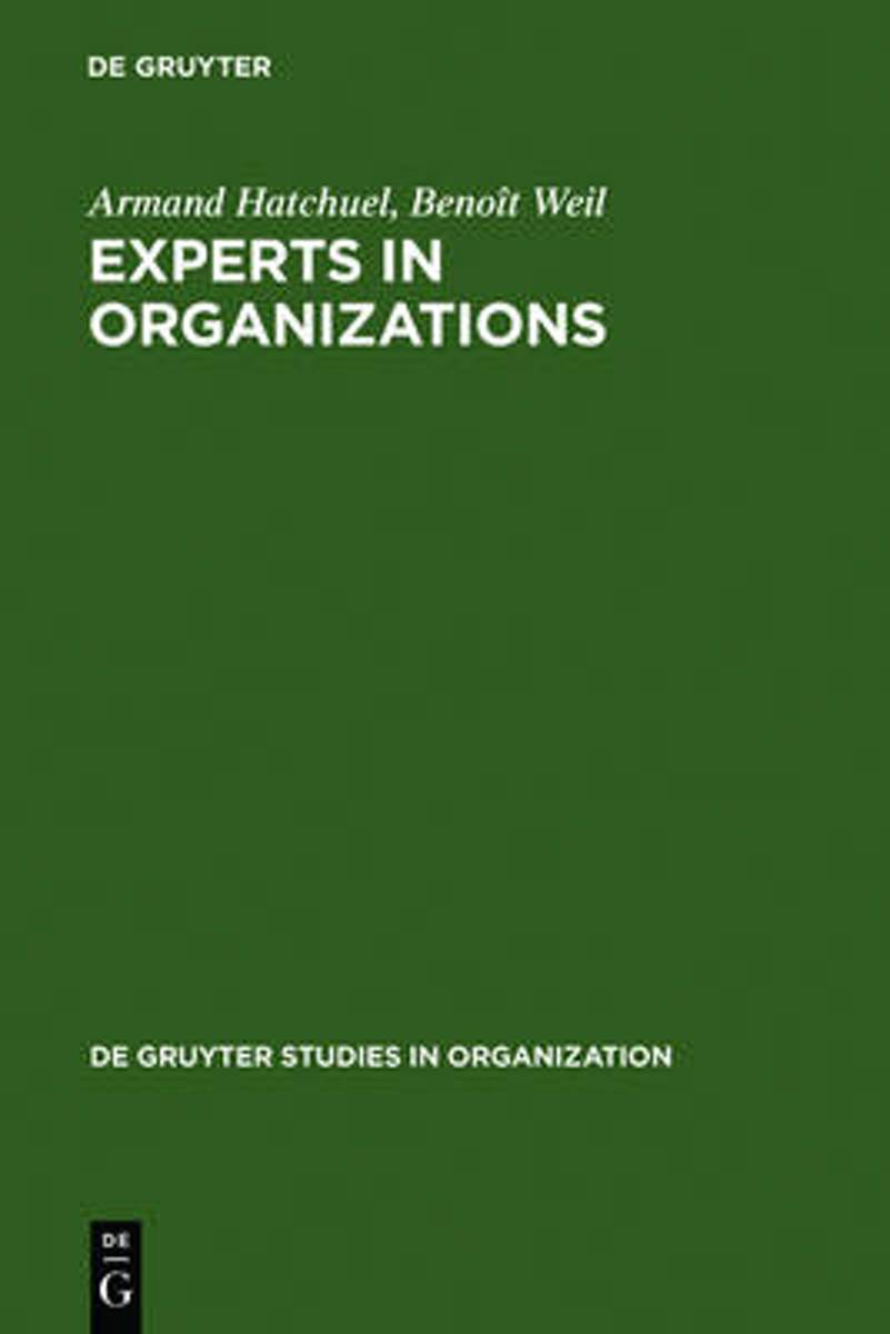 Experts in Organizations
