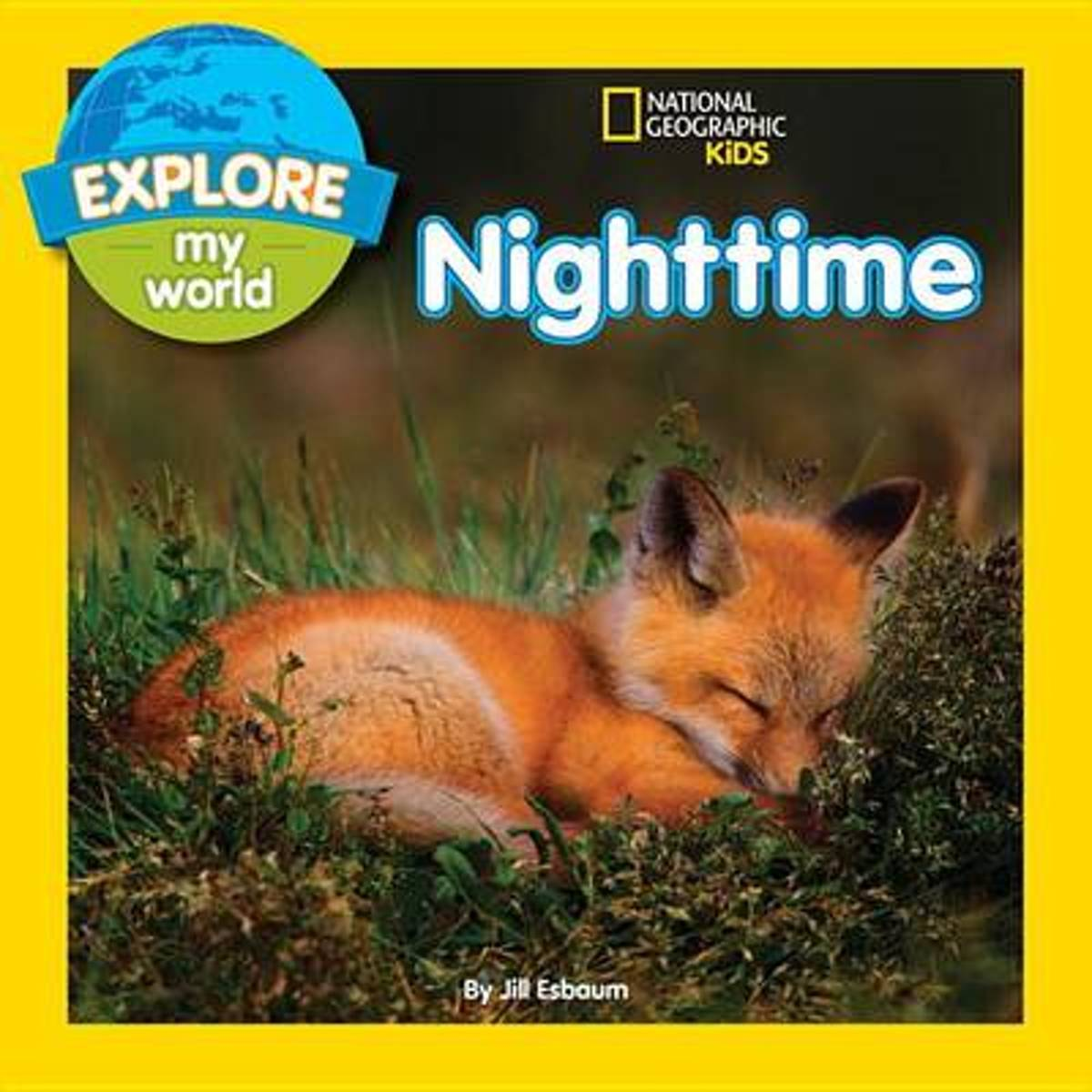 Explore My World Nighttime