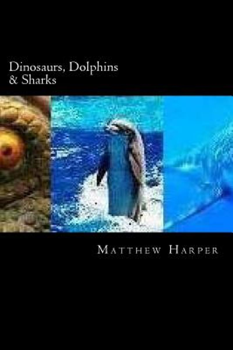 Dinosaurs, Dolphins & Sharks