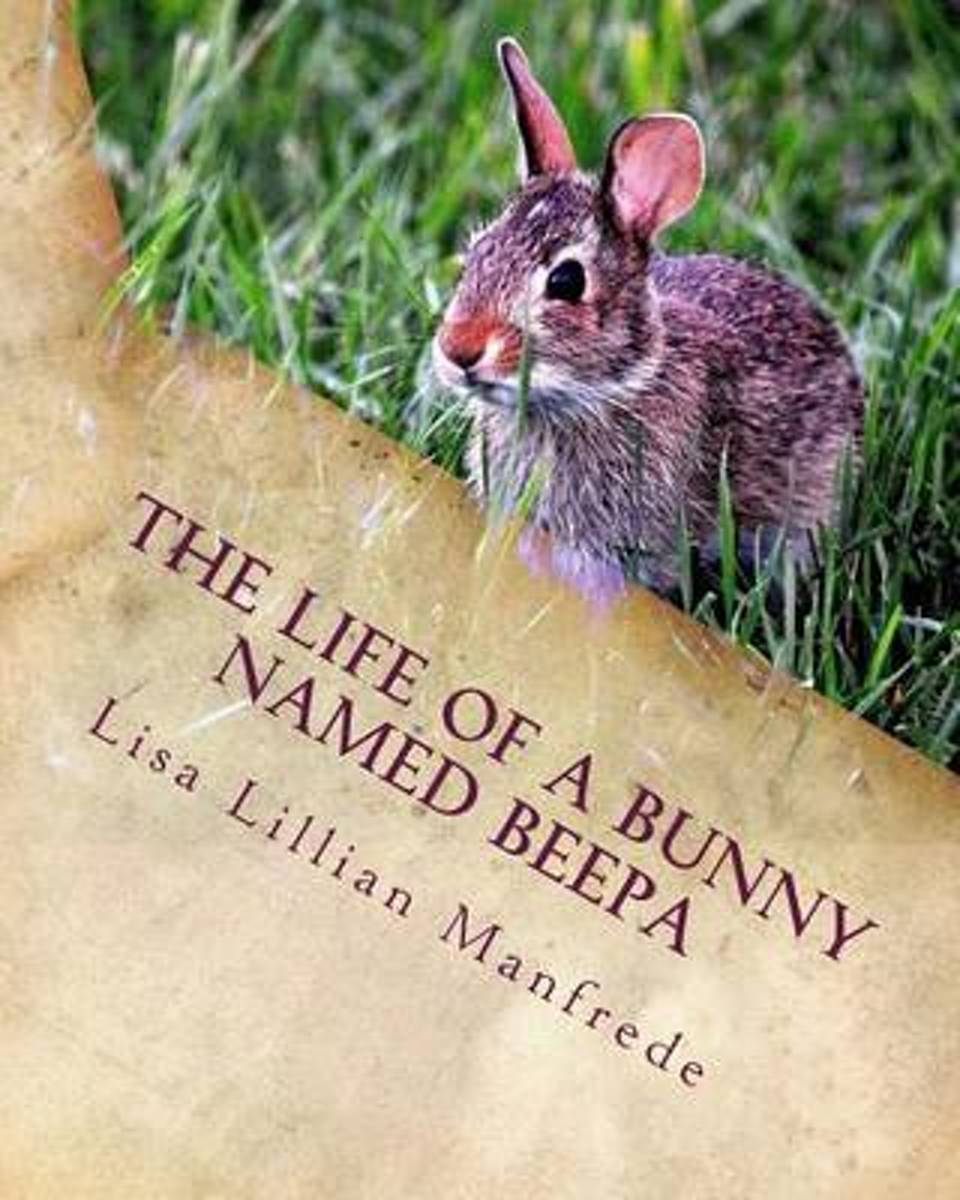 The Life of a Bunny Named Beepa