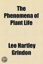 The Phenomena Of Plant Life